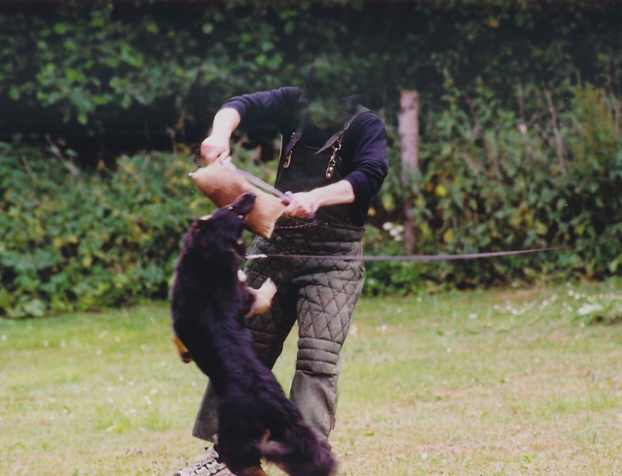 Baika_v_Hause_Luka_Schutzdienst_Grossbellhofen_2003